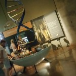 the Cradle of Humankind - South Africa